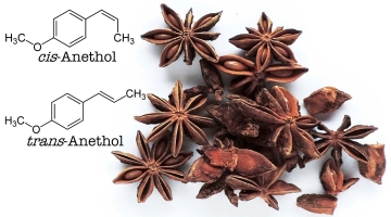 Stjerneanis og anethol