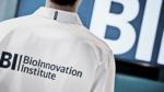 Institut skal give flere danske start-ups succes