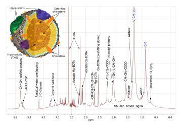Illustrationen viser et NMR-spektrum af blodplasma. Øverst i venstre hjørne ses opbygningen af et lipoprotein.