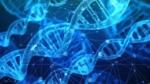 Politi tager kontroversiel DNA-metode i brug