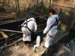Forurening fra kloakvand er vanskelig at måle