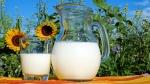 Bakterier omdanner mælkesukker til alkohol