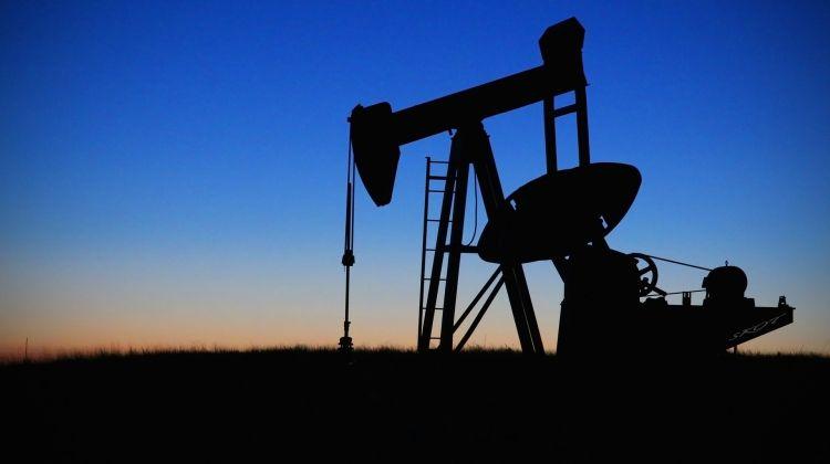Vi afslører oliens hemmeligheder – næsten