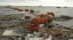 Nyt dansk forskningscenter for plast